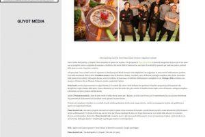 Guyot Media - Pizza Social Lab